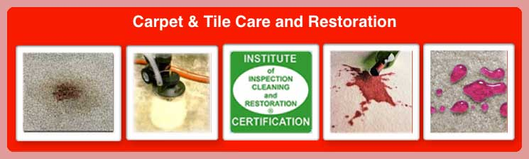 CARPET/TILE CARE AND RESTORATION IN PHOENIX, AZ